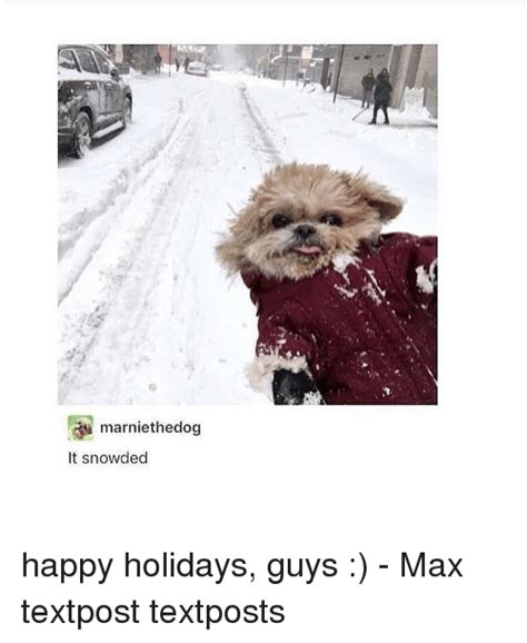 Happy Christmas Meme - marniethedog it snowded happy holidays guys max textpost textposts meme on sizzle