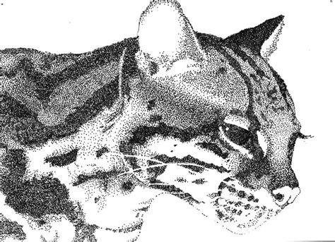 ocelot pointillism  shippou ookami  deviantart