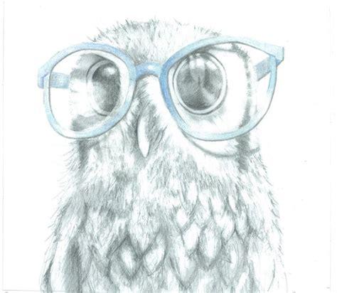 nosy owl stuart original drawing pencil drawing
