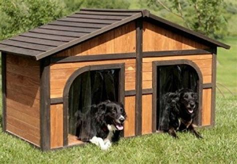 pin  casinha de cachorro