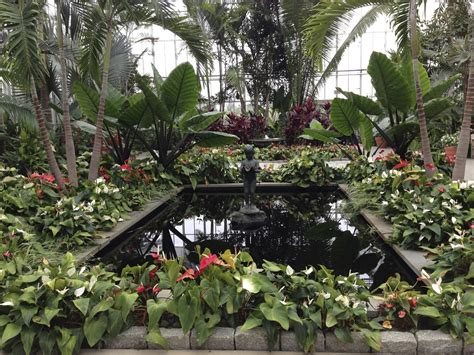 location roger williams botanical garden leslie and