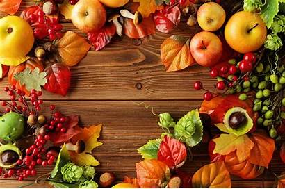 Harvest Autumn Background Apples Fruits Fruit Still