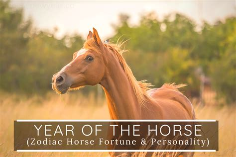 horse year 2021 chinese zodiac horoscope fortune personality