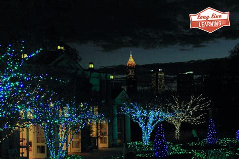 atlanta botanical garden garden lights nights
