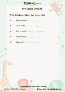 Worksheets For Class 1 Evs Ncert  U0026 Cbse