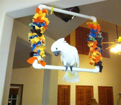 diy birdparrot swing bird toys pinterest diy swing swings  parrots