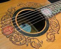 blueberry quot special order quot dreadnought multi scale acoustic guitar ebay
