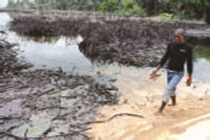 Oil Spill Experts Warn Ogoni Residents To Stop Consuming