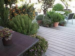 Kübelpflanzen Für Terrasse : terrassenbau am hang ~ Lizthompson.info Haus und Dekorationen