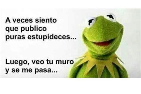 memes de la rana rene  frases  veces en imagenes