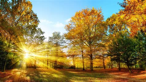 Autumn Equinox: The Science Behind the First Day of Fall ...