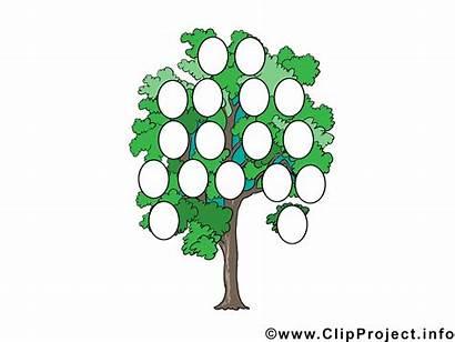Stammbaum Vorlage Ausdrucken Zum Familienstammbaum Kostenlos Vorlagen