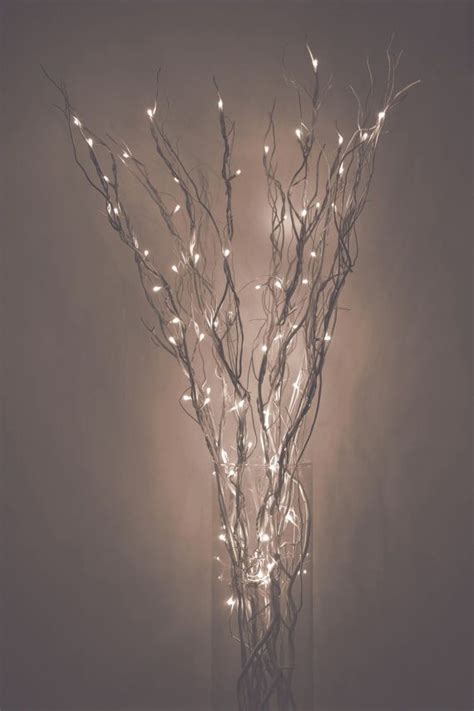 Light Up Branches by Best 20 Lighted Branches Ideas On
