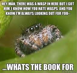 spider meme reneedezvous