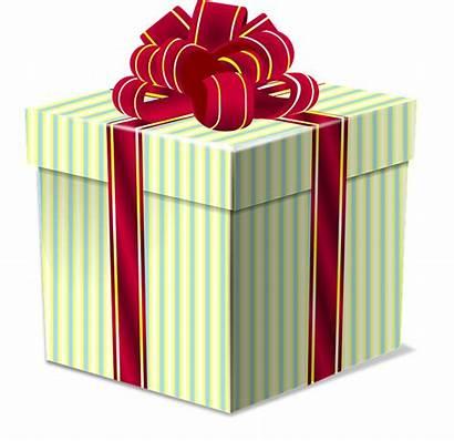 Bow Christmas Box Gift Holiday Present Vector