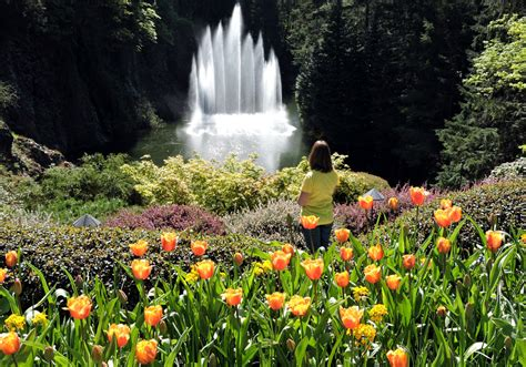 World Renowned Butchart Gardens Vancouver Island