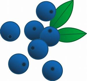 Blueberries Vector Illustration - Free Clip Art