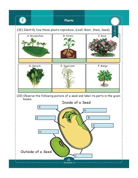 science grade 5 worksheets science best free printable