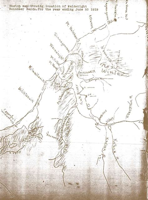 sketch map showing location of wainright reindeer herds