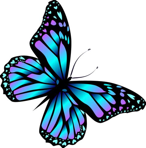 farfalle clipart image result for bugs and butterflies farfalle