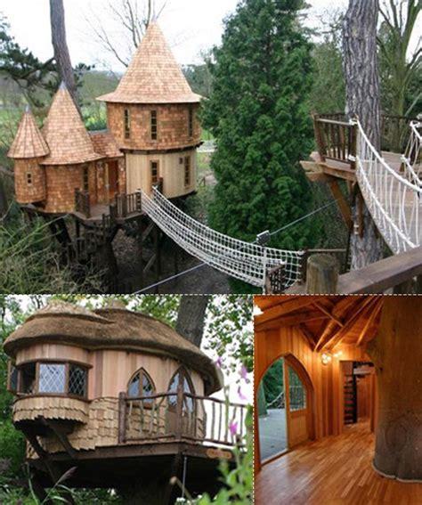 tree houses awaken   child
