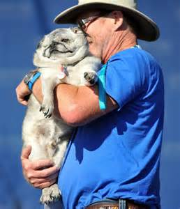 rascal world s ugliest dog contest 2015 pictures cbs