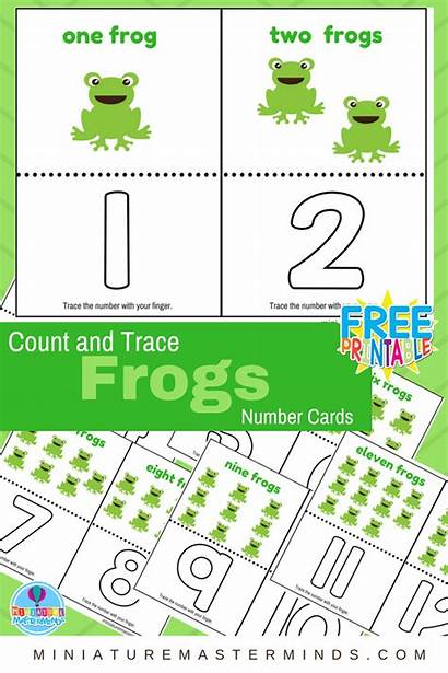 Count Frog Math Frogs Number Trace Cards