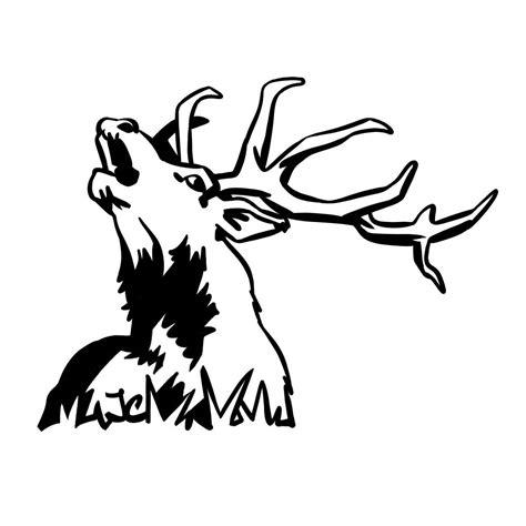 coloriage animaux des bois haut coloriage hd images