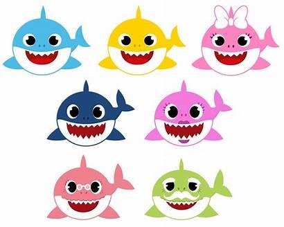 Shark Svg Clipart Vector Fiesta Birthday Cut