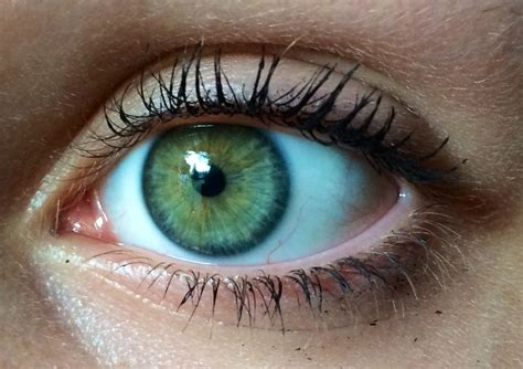 And Blue Eye by Green Blue My Are Like Green And Blue Ring