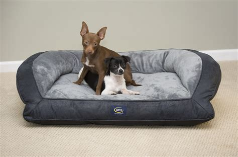 buy serta pet beds