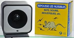 Répulsif Souris Efficace : ultrason souris et rat repulsif ~ Melissatoandfro.com Idées de Décoration