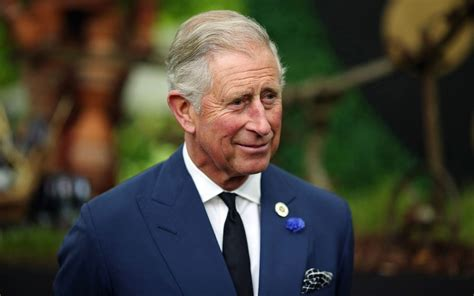 documentary  prince charles postponed  royal