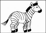 Zebra Coloring Animal Animals Pages Drawing Zoo Printable Cute Template Colouring Print Baby Templates Draw Cartoon Shape Colorings Vector Yahoo sketch template
