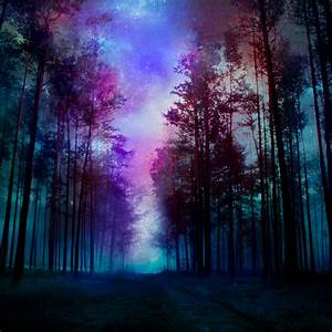 magical forest - night by BaxiaArt on DeviantArt