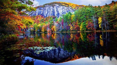 autumn forest reflected   lake  ultra hd wallpaper