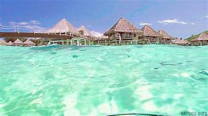 Water Clear Ocean Gifs Wave Playa Giphy