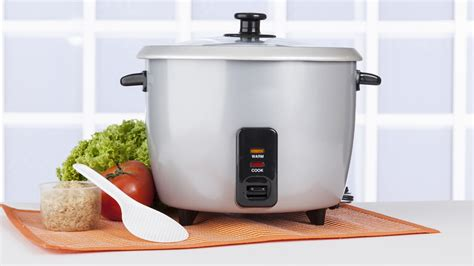 rice cooker things today ways stainless steel slow forget recipes food which cooking brownies steamer kitchen scratch need tips everything