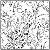 Coloring Adult Sunset Butterfly Printable Adults Colouring Sheets Getcolorings Flower Botanical Coloriage Relaxation Fine Papillon sketch template