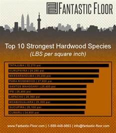 fantastic floor hardwood strength which species is best infographic