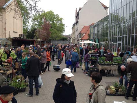 Botanischer Garten Erlangen by Pflanzenb 246 Rse Botanischer Garten Erlangen Staudenfreunde