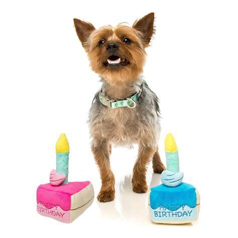 fuzzyard birthday cake candle plush squeaker dog toy
