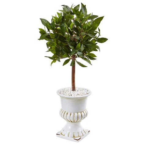 Nearly Natural Indoor Sweet Bay Mini Topiary Artificial