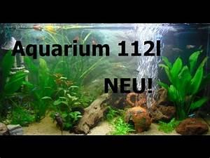 Aquarium Gestaltung Bilder : my fish 112 liter aquarium fische nach neu gestaltung ~ Lizthompson.info Haus und Dekorationen