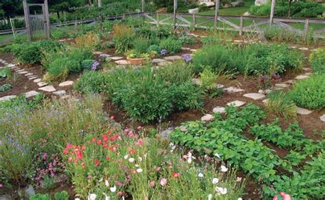 Who Says A Kitchen Garden Can't Be Beautiful? Finegardening