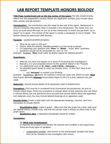 what is a template in biology 6 biology lab report template expense report