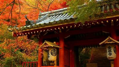 Japanese Oriental Asian Architecture Nature Forest Buildings