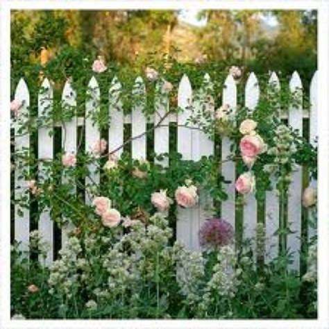 white picket fence cottage garden