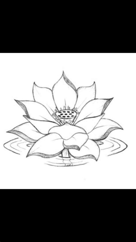 Pin by Diamond Paws on Adorning the temple in which I dwell in 2019 | Lotus drawing, Drawings