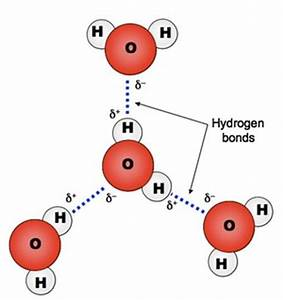 electrostatics - If a water molecule is neutral, how do ...
